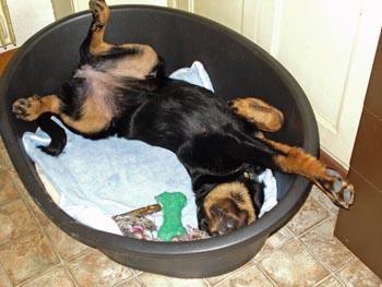 Je dors comme ça!